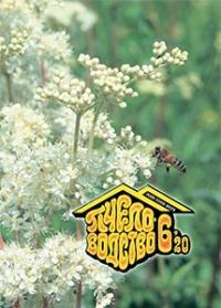 Пчеловодство 2020 № 6