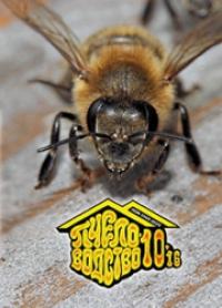 Пчеловодство 2016 №10