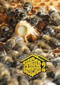 Пчеловодство 2010 № 2