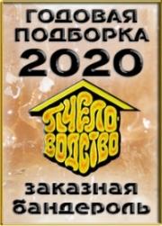 Годовая 2020 г., заказная банд.