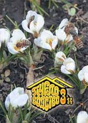 Пчеловодство 2014 № 3