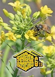 Пчеловодство 2018 № 6