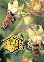 Пчеловодство 2021 № 6
