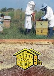 Пчеловодство 2017 № 9
