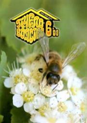 Пчеловодство 2008 № 6