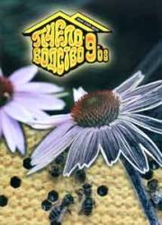 Пчеловодство 2008 № 9